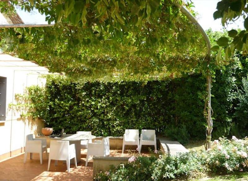 Mái che bằng cây xanh tạo sự thoáng mát cho sân vườn