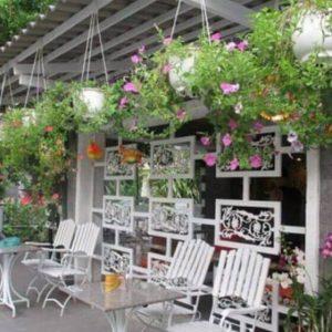 Những mẫu mái xếp lượn sóng cho quán cafe, quán ăn